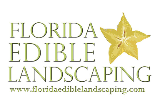 Florida Edible Landscaping Pine Island 39 S Tropical Farmers Market